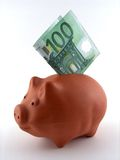 Schweingeldkasten Lizenzfreies Stockfoto
