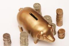 Schweingeldkasten Stockfotografie