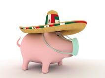 Schweingrippe   Lizenzfreie Stockfotografie