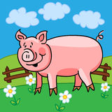 Schweinkarikatur Lizenzfreies Stockbild