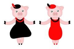 Schweinmädchen in den verschiedenen Kleidern Stockfotos