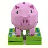 Schweinquerneigung mit Banknote Stockfotos