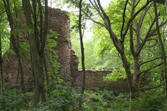 Schweinsburg Castle Ruin Stock Images