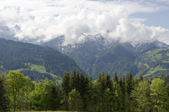 Schweiz Fotografie Stock