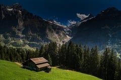 Schweiz berg i sommaren Arkivbild