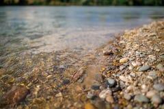 Schweiz landskap vid floden Arkivfoto