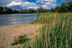 Schweiz landskap vid floden Arkivbild