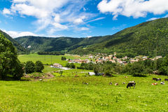 Schweizare landskap Arkivbild
