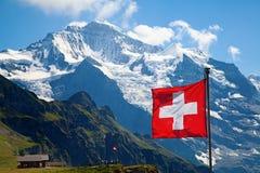 Schweizareflagga Arkivfoto