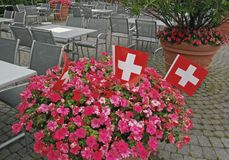 Schweizareflaggor på blomkrukan Royaltyfri Foto