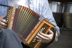 Schweizer accordian Stockbilder