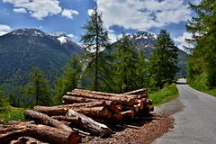 Schweizer Alpe-Ansicht des Weges zum Bos-cha Lizenzfreies Stockbild