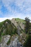 Schweizer Alpen Lizenzfreie Stockfotografie