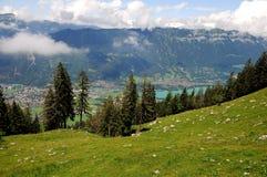 Schweizer Alpen. lizenzfreie stockfotos