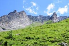 Schweizer Alpen. stockfoto