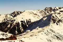 Schweizer Alpen in den Weinlesefarben stockbild