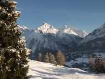 Schweizer Alpen im Winter Stockbild