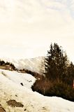 Schweizer Alpen und Frühlingslandschaft lizenzfreie stockfotos