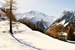 Schweizer Alpen und romantische Winterlandschaft lizenzfreies stockbild