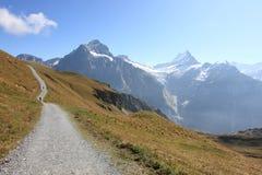 Schweizer Alpen: wandernde Spur von Jungfrau Lizenzfreies Stockbild