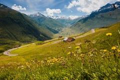 Schweizer Alpenansicht von Oberalppass, Blumen, Scheune Stockbilder