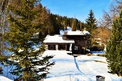 Schweizer Alpenlandschaft und -schnee lizenzfreie stockbilder