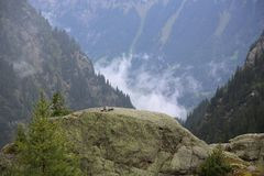 Schweizer Berge Lizenzfreie Stockfotos