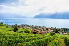 Schweizer Dorf nahe Lavaux-Weinberg-Terrassenwanderweg von der Schweiz Lizenzfreie Stockbilder