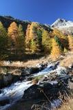 Schweizer Herbstfluß lizenzfreies stockfoto