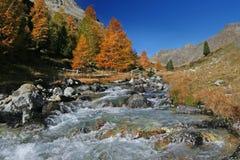 Schweizer Herbstfluß lizenzfreies stockbild