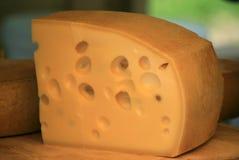 Schweizer Käse lizenzfreies stockbild