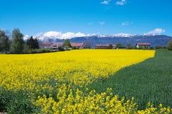 Schweizer Landschaft Stockbilder