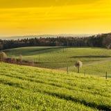 Schweizer Landschaft früh morgens Lizenzfreies Stockbild