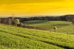 Schweizer Landschaft früh morgens Stockfotos