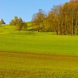 Schweizer Landschaft mit Wäldern und Wiese Lizenzfreie Stockbilder