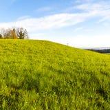 Schweizer Landschaft mit Wäldern und Wiese Lizenzfreies Stockbild