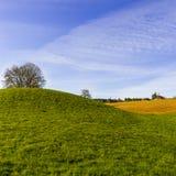 Schweizer Landschaft mit Wiesen Stockfoto