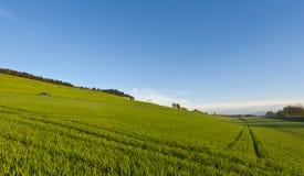 Schweizer Landschaft mit Wiesen Stockfotos
