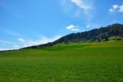 Schweizer Landschaftslandschaft während des Frühlinges Lizenzfreie Stockfotos