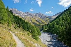 Schweizer Nationalpark Stockbild