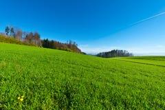 Schweizer Weide Stockbilder