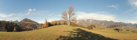 Schweizersberg Stock Image