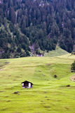 Schweizisk Alp Royaltyfri Foto