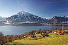 Schweizisk fjällängberg- och sjösikt nära Thun sjön i vinter Royaltyfri Fotografi