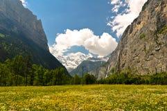 Schweizisk fjällängdal, sceniskt landskap Arkivfoto