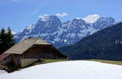 Schweizisk mejerilantgård i de höga fjällängarna royaltyfria bilder