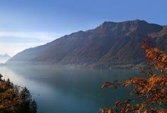 schweizisk switzerland för höstfärglake thun arkivfoto