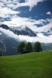 schweiziska alps Royaltyfri Bild