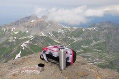 Schweiziska Alps. Royaltyfri Foto