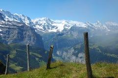 schweiziska alps Arkivbilder